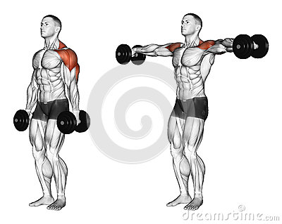 Exercising. Lifting dumbbell in hand
