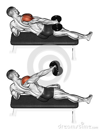 Exercising. Lifting a dumbbell in one hand side, l