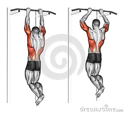 Free Exercising. Pull-ups On The Brachialis Stock Photo - 57379060