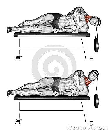 Free Exercising. Side Lifting Head Lying Royalty Free Stock Image - 43638796