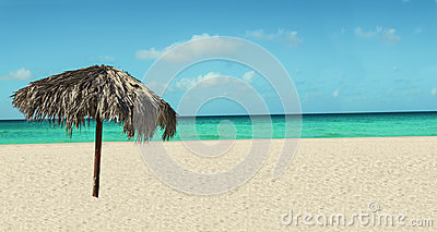 Exotic beach with palm tree umbrella, azure ocean