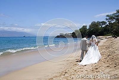 Exotic Beach Wedding med. wide