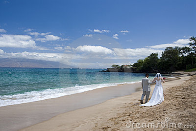 Exotic Beach Wedding Wide view