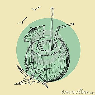 Exotic coconut cocktail. Vector sketch Illustration