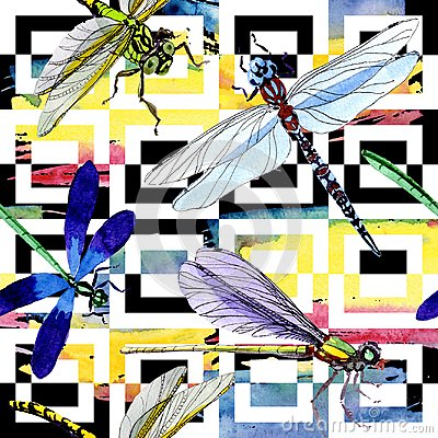 Free Exotic Dragonfly Wild Insect Pattern In A Watercolor Style. Stock Photography - 107792682