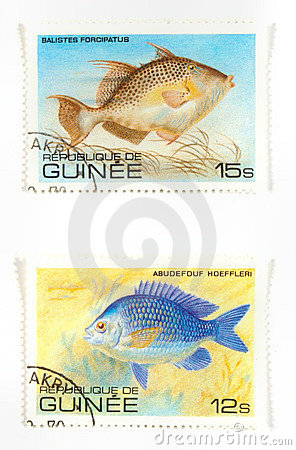 Exotic fish on stamps