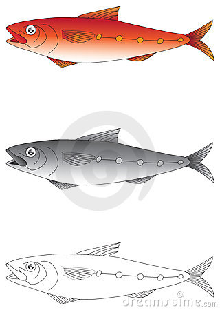 Exotic fish vector illustration