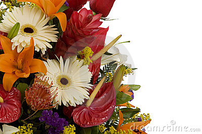 Exotic flowers arrangment II