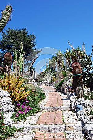 Free Exotic Garden Stock Photo - 5241340