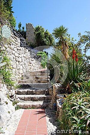 Free Exotic Garden Royalty Free Stock Image - 5504986