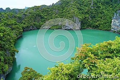 Exotic Lake