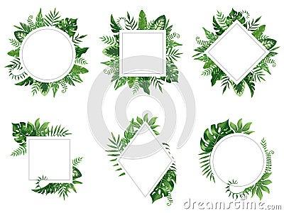 Exotic leaf frame. Spring leaves card, tropical tree frames and vintage floral jungle border isolated vector set Vector Illustration