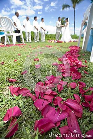 Exotic tropic Wedding  wide