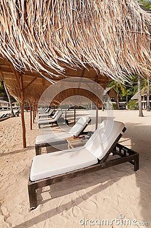 Exotic Tropical Beach Beds at Sea Shore