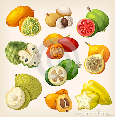 Free Exotic Tropical Fruit. Stock Photos - 51591763