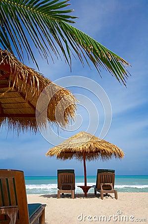 Free Exotic Umbrella Royalty Free Stock Photo - 2745765
