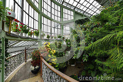 Winter Garden Greenhouse Kretinga Lithuania Stock Photo Image