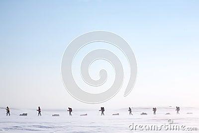 Expédition arctique