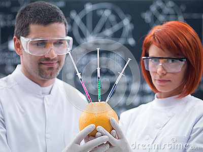 Experimental studies on a grapefruit