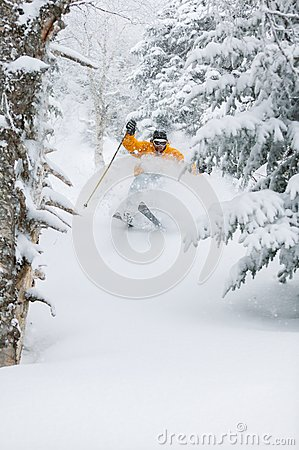 Free Expert Skier Skiing Powder Snow In Stowe, Vermont, Royalty Free Stock Images - 38260839