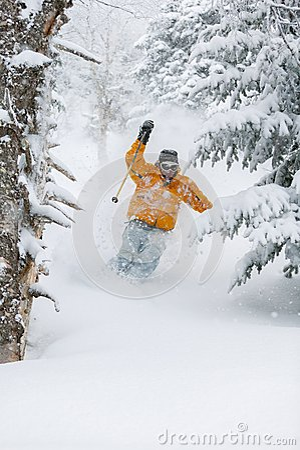 Free Expert Skier Skiing Powder Snow In Stowe, Vermont, Royalty Free Stock Photo - 38260845