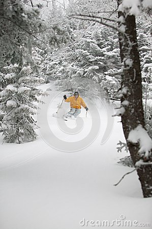 Free Expert Skier Skiing Powder Snow In Stowe, Vermont, Stock Images - 38260884