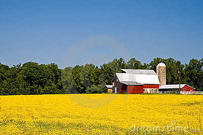 Exploração agrícola do país na primavera