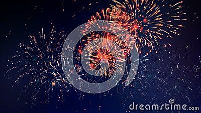 Explosões coloridas do ` dos fogos-de-artifício na escuridão video estoque
