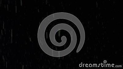 Explosion des Wei?mehls auf schwarzem Hintergrund Gesamtl?nge auf Lager Explosion der starken Wolke des wei?en Pulvers mit dem Ze stock video