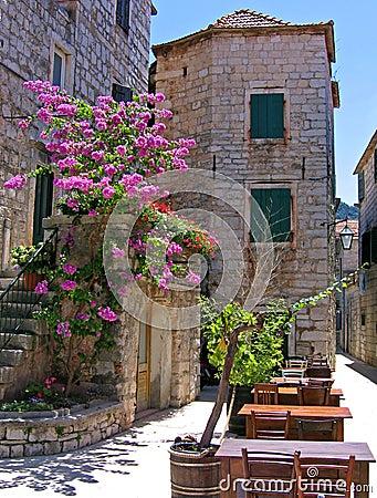 Free Exquisite Café, Croatia Royalty Free Stock Photos - 3029198