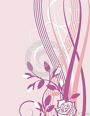 Exquisite rose series
