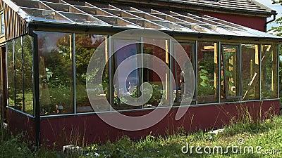 Exterior del patio de la habitación Sun almacen de video