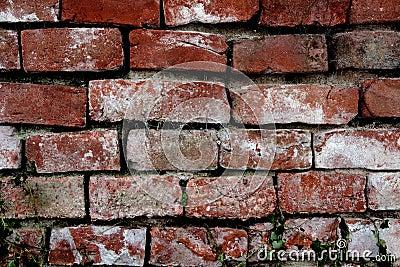 Exterior of old brick wall