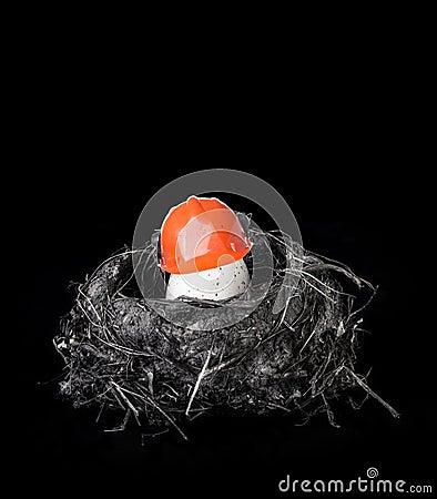 Free Extra Egg-tra Protection Stock Photos - 31575643