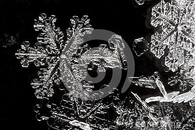 Extreme Close Up of Snow Flake