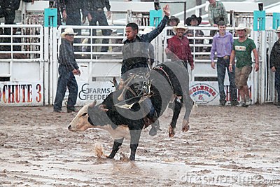 Extreme Rodeo Editorial Image