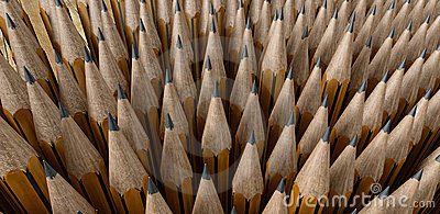 Extremidades del lápiz