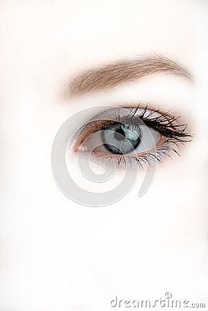 Free Eye Royalty Free Stock Photo - 2587165