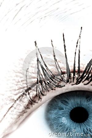 Eye #4