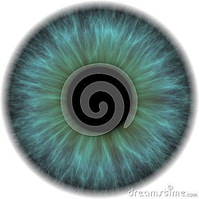 Eye iris Cartoon Illustration