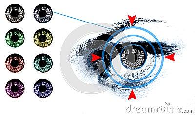 Eye lens shade chart