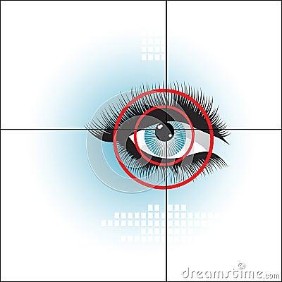 Eye scan biometrics