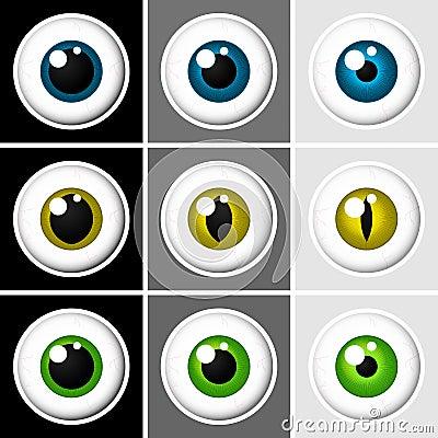 Eyeballs human and animal