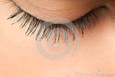 Eyelash Eyelashes