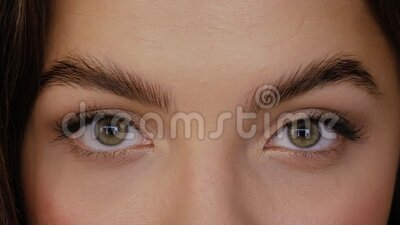 Eyes after Eyebrow Lamination Procedure. Beautiful girl with green brown eyes after Eyebrow Lamination Procedure close-up. Young woman looks straight into the