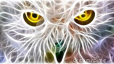 Eyes , i spy