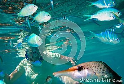 Eyes Underwater