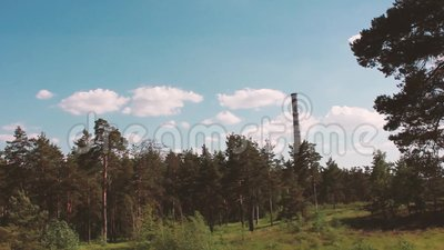 F?brica da floresta, c?u, nuvens, vento video estoque