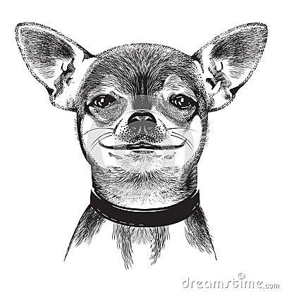 Förfölja chihuahuaen. Illustration