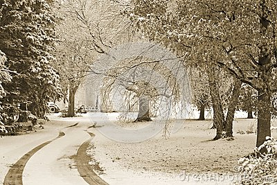 Första snow
